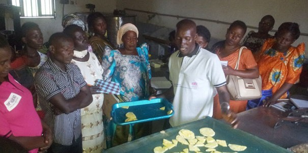 Women's Groups in Luweero Receive Training on Improved Farming