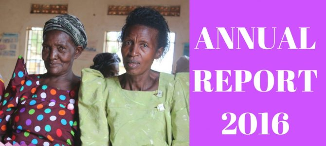 Accounting for Progress Made with 2016 Annual Report